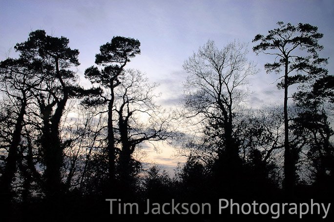 Last Light Photograph by Tim Jackson