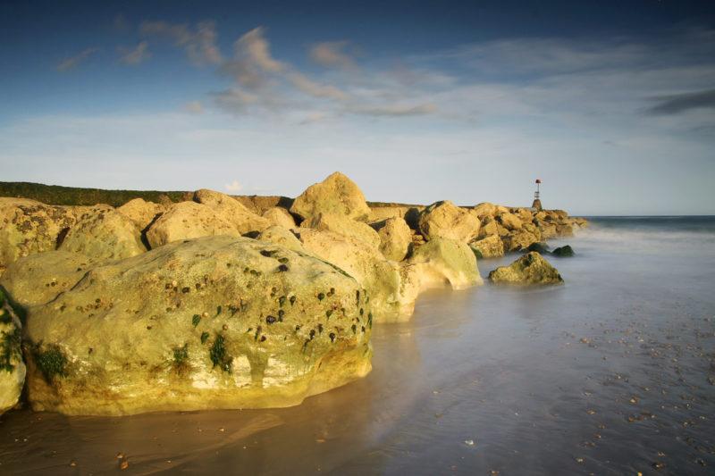 Iron Stone Doggers Iron Stone Doggers Photograph by Tim Jackson