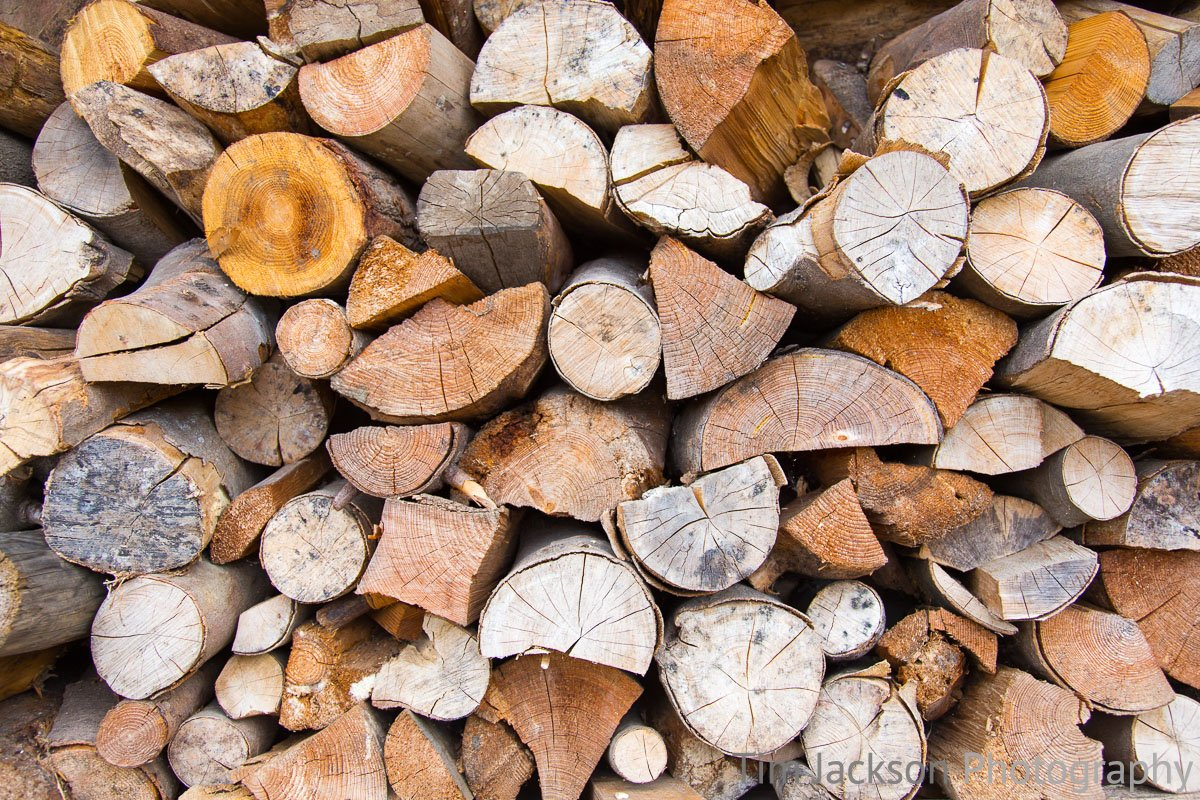 Woodpile Woodpile Photograph by Tim Jackson