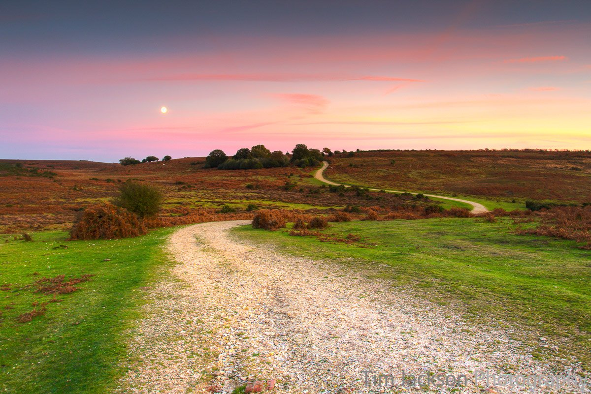 Ashley Walk Bombing Range, New Forest Ashley Walk at Dusk Photograph by Tim Jackson