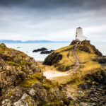 Make hay while the sun shines, which is not a lot in North Wales in February. Twr Mawr Lighthouse Photograph by Tim Jackson