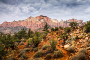 US West Coast Zion National Park Watchman Trail Photograph by Tim Jackson