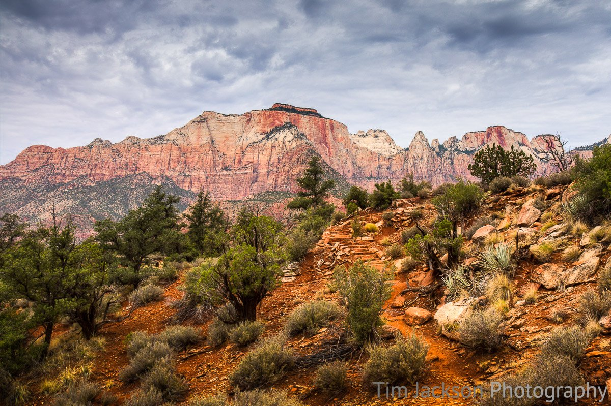Zion National Park Watchman Trail Photograph by Tim Jackson