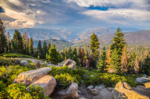 US West Coast Kings Canyon View Point Photograph by Tim Jackson